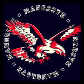 Mangrove Steel ORchestra