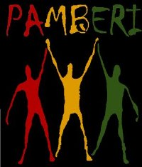 Pamberi Steel Orchestra band logo - When Steel Talks