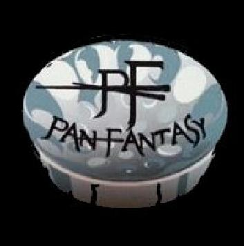 Pan Fantasy Steel Orchestra band logo - WST